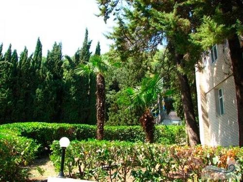 Пансионат Береговой: парк
