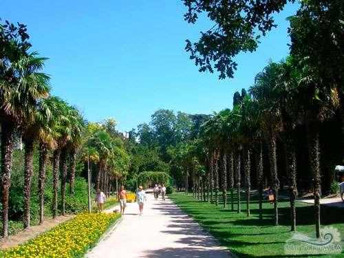 Санаторий Мисхор: парк