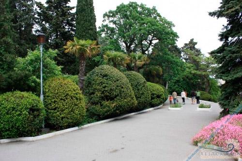 Санаторий Форос: парк